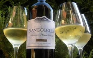 Biancollela Pino Grigio Style